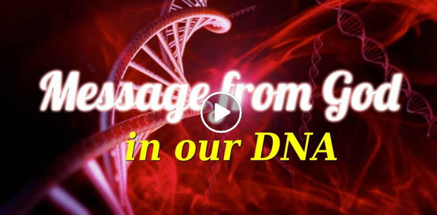 There's a Message from God in our DNA - This is Amazing!