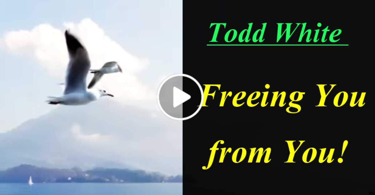 Todd White - Freeing You from You! (June-10-2020)