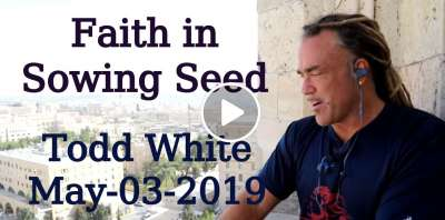 Todd White - Faith in Sowing Seed (May-03-2019)