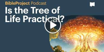 Is the Tree of Life Practical? - BibleProject Podcast (March-18-2020)